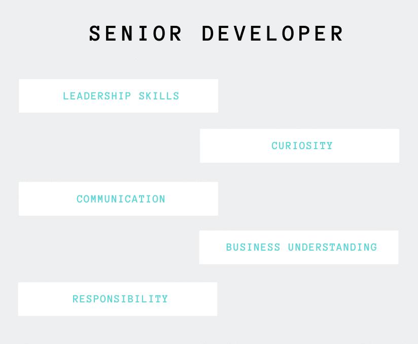 senior developer skills